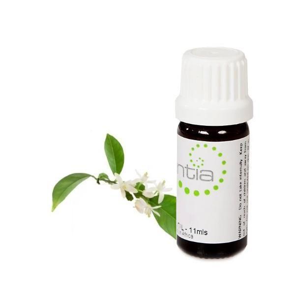 Escentia Essential Oil Neroli 11ml