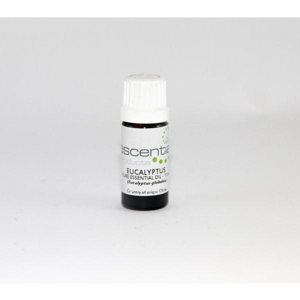 Escentia Essential Oil Eucalyptus Globulus 11ml