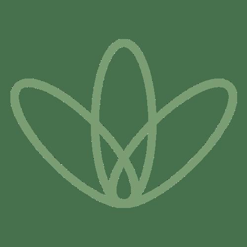 Olgani Natural Toothpowder Charcoal & Cocoa 100ml